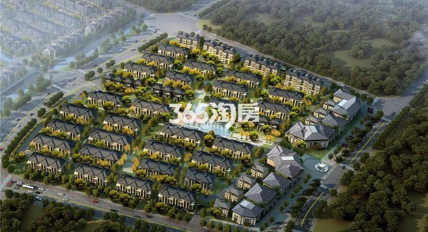 碧桂园滨湖湾鸟瞰图