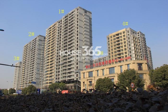 2014年12月瑞立东方花城项目实景--1-4、8号楼