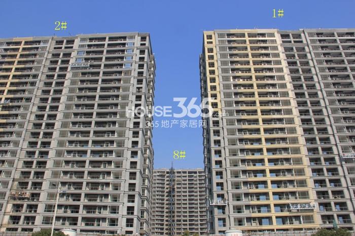 2014年12月瑞立东方花城项目实景--1、2、8号楼