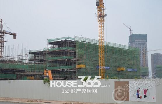 万科森林公园四十五中校区12月工程进度(2014.12)