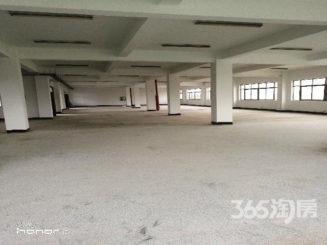 4300平方米标准厂房出售