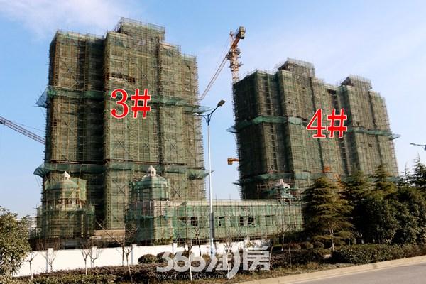 信德悦城3#、4#楼工程进度
