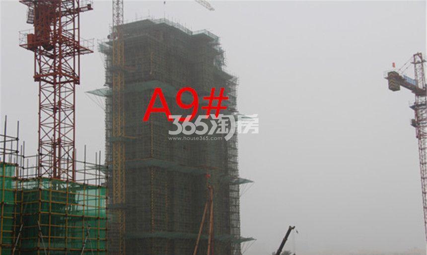 东方樾府A9#工程进度实景图(10.30)