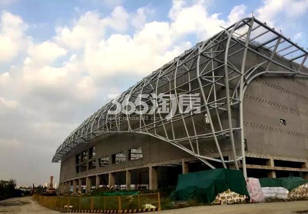 无锡万达城水乐园北侧钢结构垂挂工程进度实景图(2017.10摄)