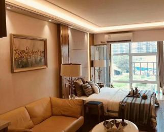 鼎鑫中心地铁3号线 买一套可以用两套的房子 自住 投资都值得拥有