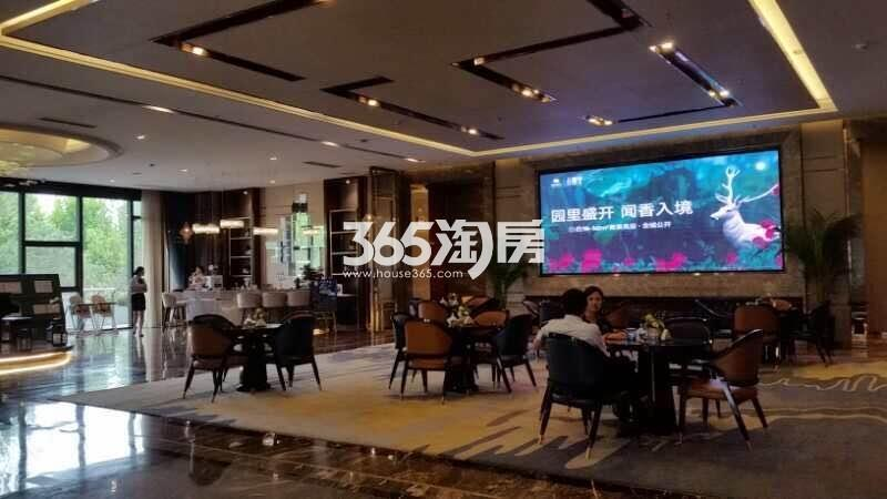 信达公园里售楼部实景图(9.29)