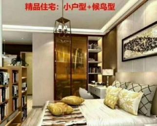 CBD(6号地块)1室1厅1卫44.41平方产权房精装