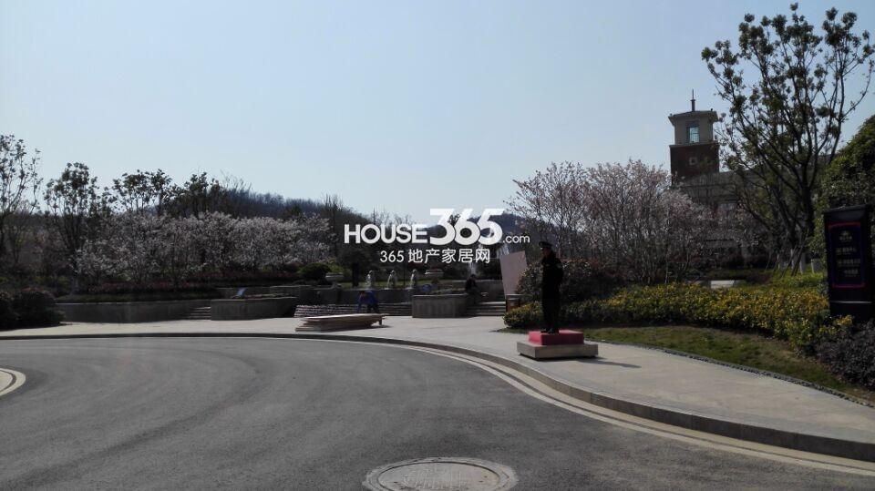 银亿东城春季景观实景图(3.25)