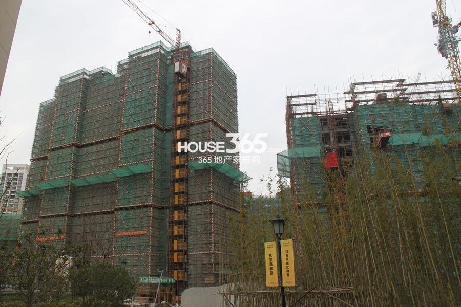 建屋海德公园项目实景图(2015.4.16)