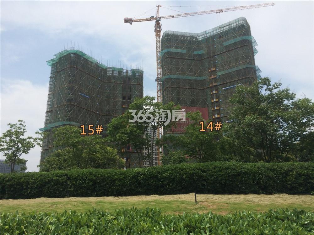 金地中心菁华14、15#在建实景图(6.21)