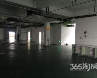 整层1055平精装招商部直租有免租期
