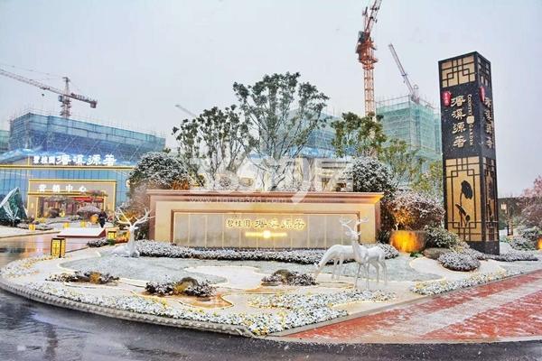 碧桂园塘溪源著雪景-营销中心(2018.1摄)
