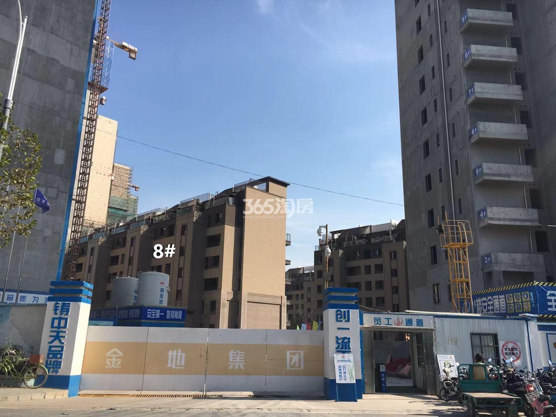 悦风华叠墅8号楼实景图(11.25)