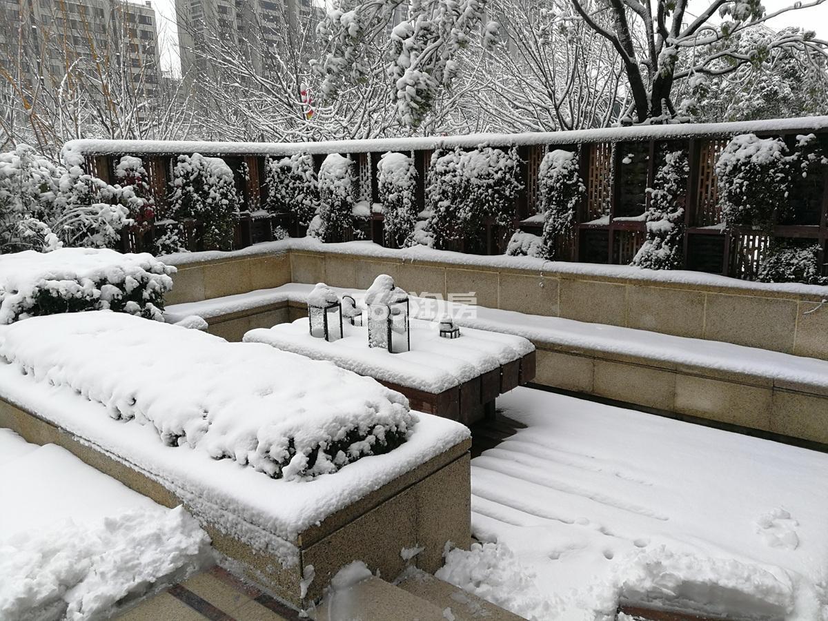 2018年1月融信澜天园区雪景
