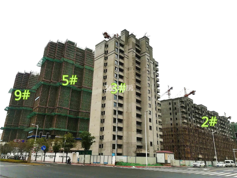 融侨观澜2#、3#、5#、9#工程进展(12.4)