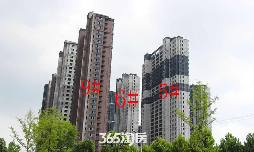 华邦观筑里5、6、9#楼工程进度(2017.8)