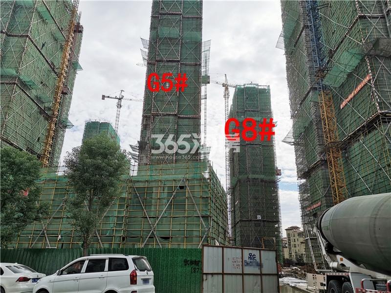 枫林学府在建G8、G5#楼实景图(9.25)