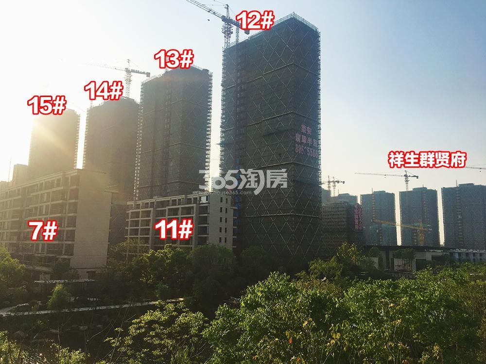 2018年5月上旬荣安翡翠半岛实景---高层12-15号楼和洋房7、11号楼