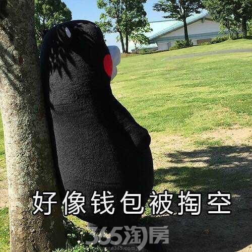 (很缺钱 365淘房 资讯中心)