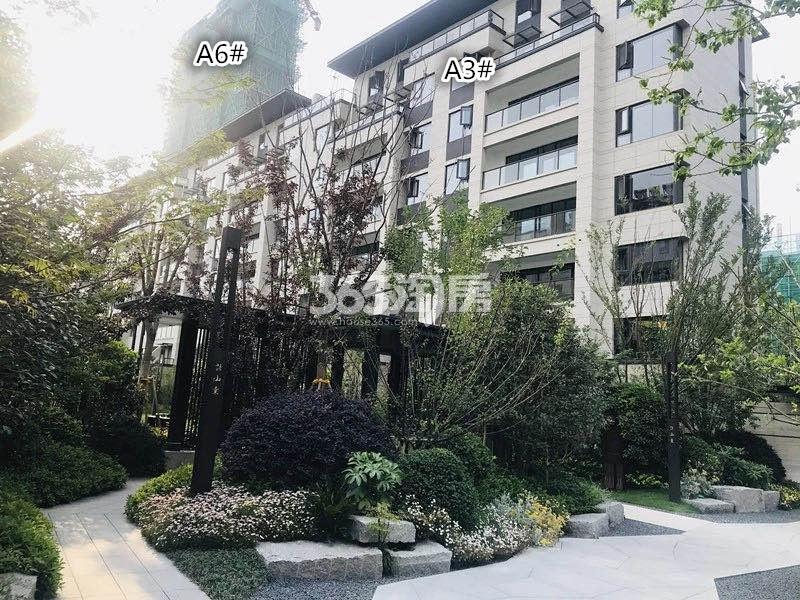 江山大境A地块3、6号楼实景图(12.30)