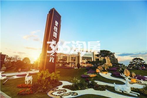 碧桂园·城市之光实景图