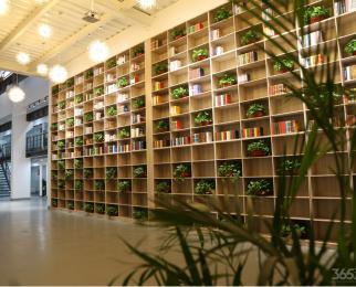 红枫智谷创业园300平大办公室直租无中介,房租优惠免