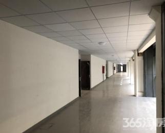 明故宫地铁金蝶科技园325㎡可注册超低价入驻
