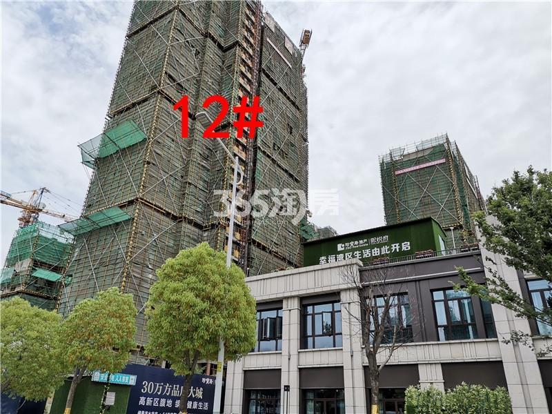 珍宝岛熙悦府在建12#楼实景图(5.30)