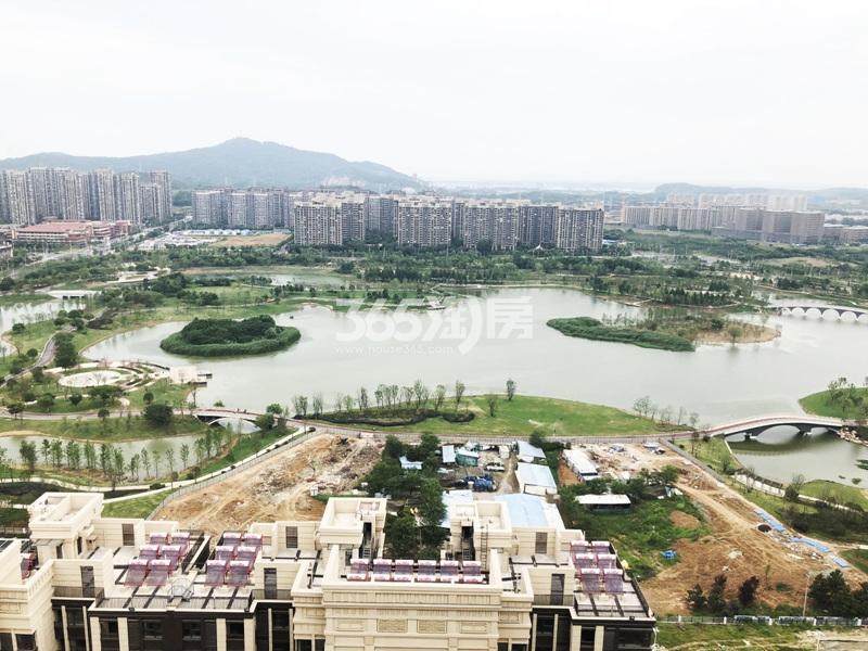 高科荣境附近的仙林湖公园实景图(6.24)