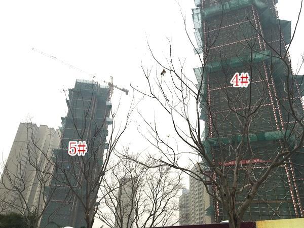 九龙仓碧玺高层4#、5#楼实景图(2018.1 摄)