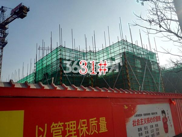 保利合景珑湾31#工地实景图(12.18)