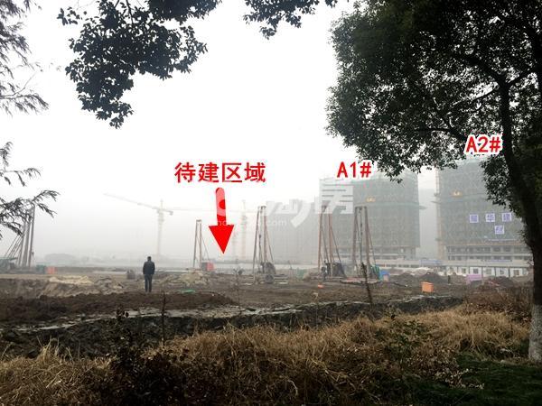 绿城凤起和鸣A1#、A1#楼工程进度以及待建区域实景图(2018.1摄)