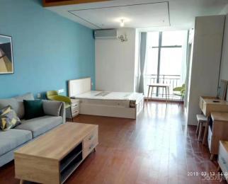 红豆国际广场1室1厅1卫60平米整租精装