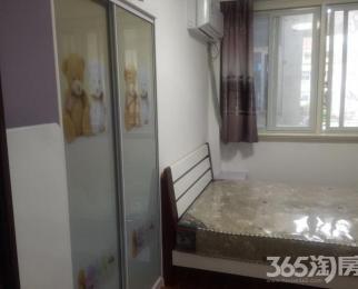 富康新村―单身公寓―精装