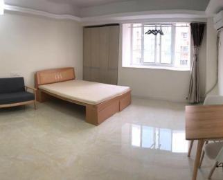 托乐嘉单身公寓1室1厅1卫45平米整租精装
