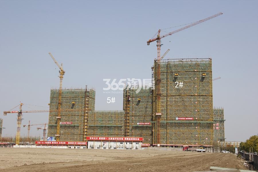 中南君奥时代2、5号楼实景图 2018年3月摄
