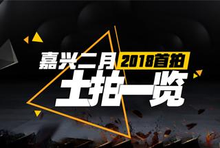 2018.2.1嘉兴土拍一览