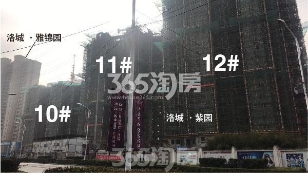 洛城·紫园高层10#-12#楼实景(2018.2)
