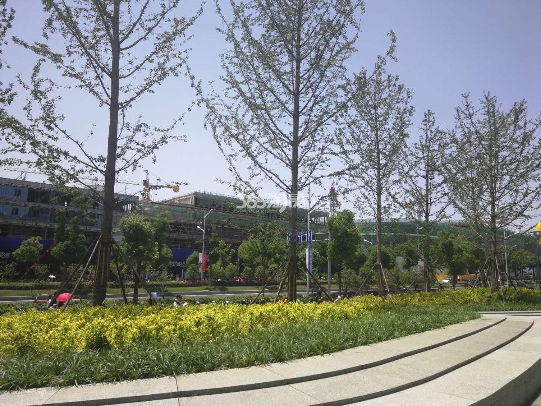建发紫悦广场施工实景图(6.27)