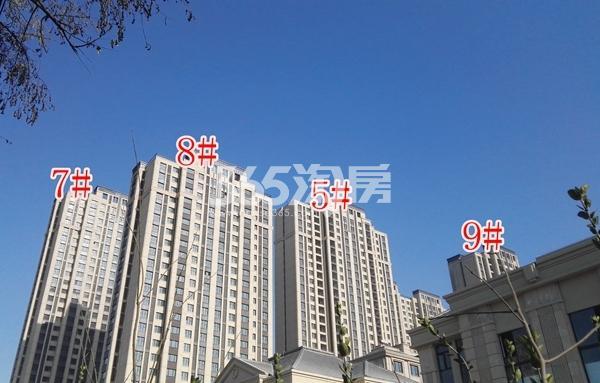 海尔滟澜公馆一期高层5-9#楼实景(12.20)