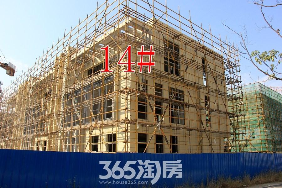 云谷科技园14#施工中(2017.11摄)