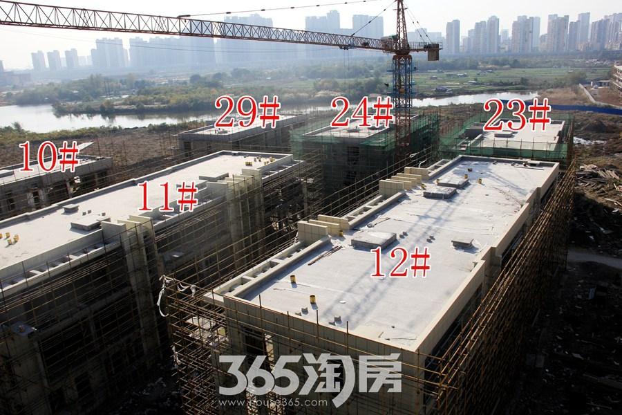 云谷科技园10#等多栋施工中(2017.11摄)