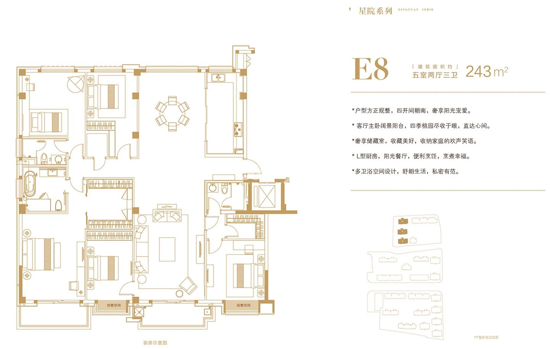 桃园世纪A地块E8户型243㎡户型图