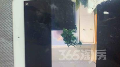 凤凰汇公寓2室1厅1卫90平米整租豪华装