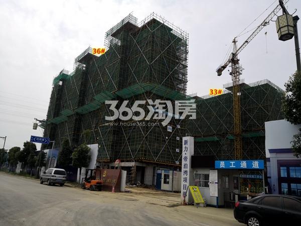 新力帝泊湾33#、36#楼小高层工程进度实景(2018.6摄)