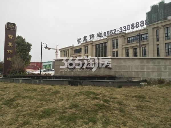 智慧锦城 营销中心 201804
