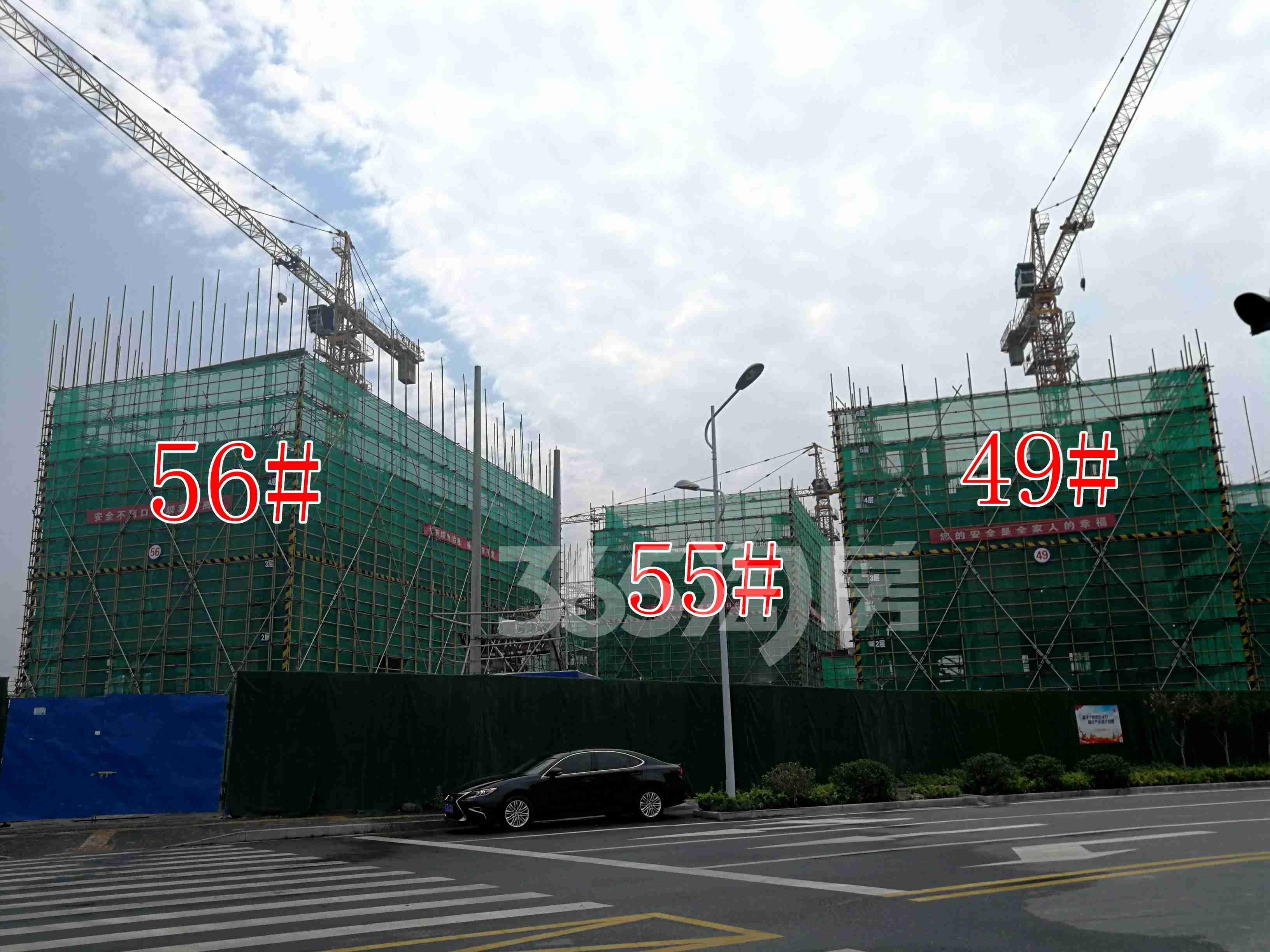 观澜别院49、55、56#工地实景图(8.26)