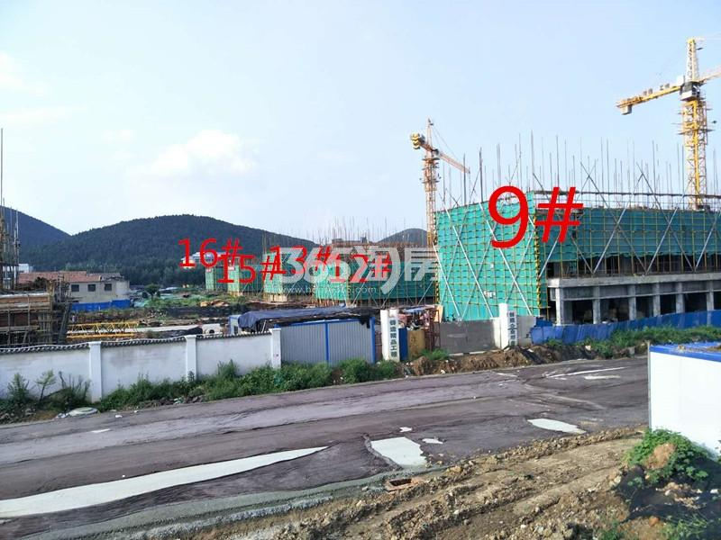 绿地理想城悦湖公馆9#楼约建至三层12、13、15、16#约建至2层(8.15)