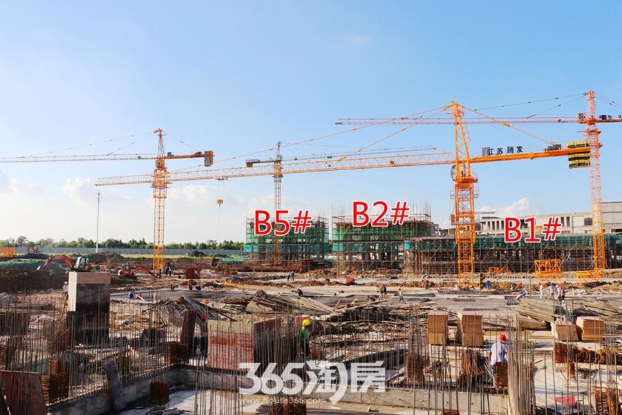 信达翡丽世家B1#B2#B5#工程进度实景图(2018.8摄)