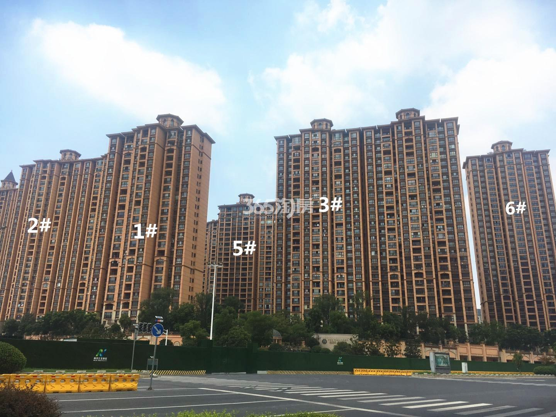 雅居乐滨江国际君悦组团1-6号楼实景图(8.23)